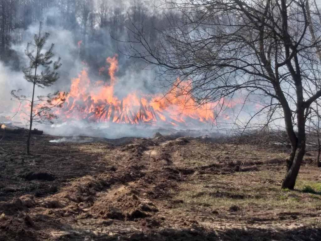The fire was first reported on April 4 / Photo from Ukraine's State Emergency Service