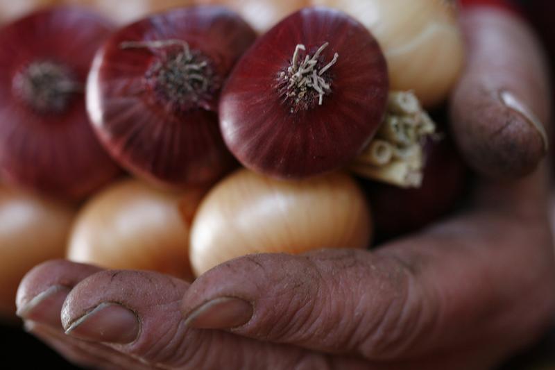 В Украине рекордно вырос экспорт лука из-за низких цен на овощ / REUTERS