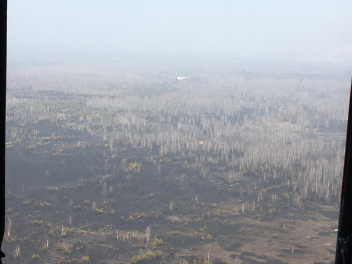 фото: ГСЧС Украины в Житомирской области