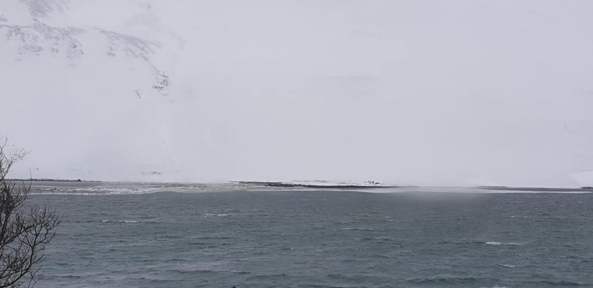 После сильного снегопада в Исландии лавины сошли в море и вызвали цунами / facebook.com/Vernharður Jósefsson