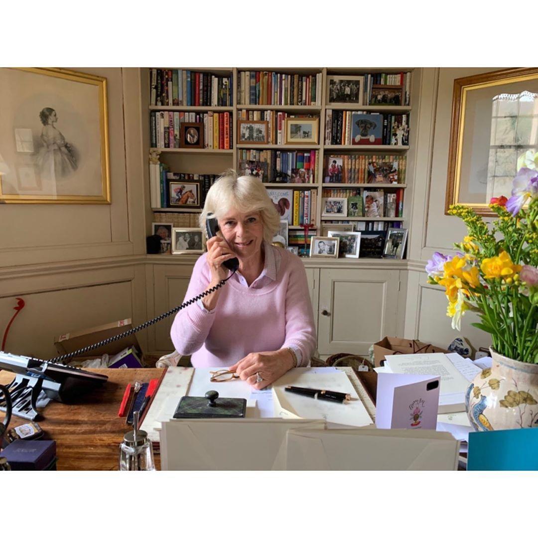 Герцогиня КорноульськаяКамилла рассказала о своих любимыхкнигах/ фото instagram.com/clarencehouse