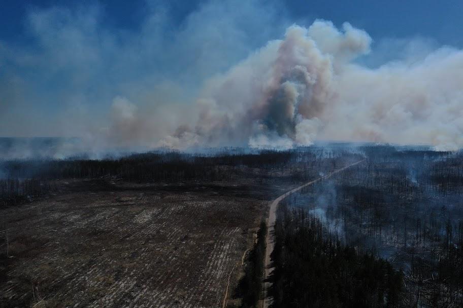 Пожара на Житомирщине и в Зоне отчуждения начались 4 апреля / facebook.com/dazv.gov.ua