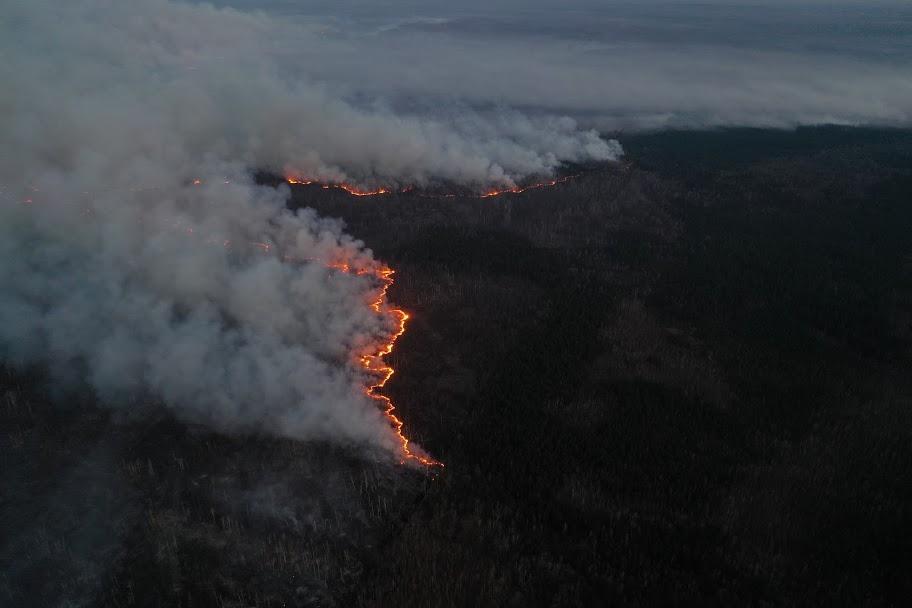 Від початку місяцямасштабні пожежі зафіксовано у Чорнобильській зоні та на Житомирщині / facebook.com/dazv.gov.ua