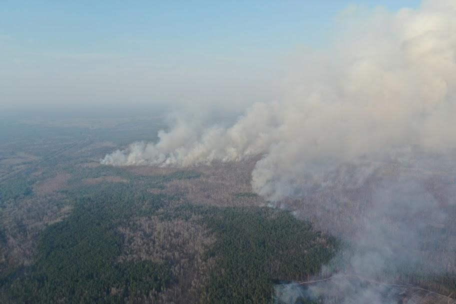 Пожар в зоне ЧАЭС длился полторы недели / фото facebook.com/dazv.gov.ua