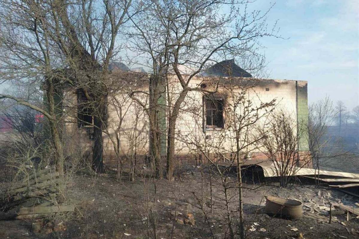 За даними очевидців, пожежа розпочалася через підпали з кількох боків / фото УДСНС в Чернігівській області