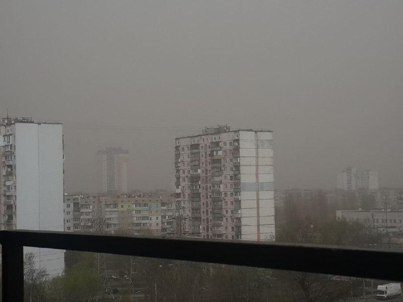 Лесной масив затянуло пылью \ фото из соцсетей