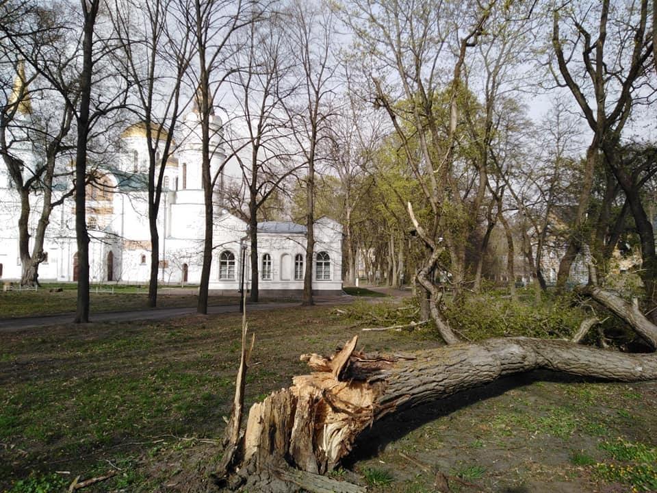 Последствия урагана на Черниговщине / фото Сергей Черняков