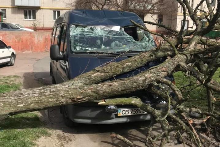 Последствия непогоды / Автомобильный форум Чернигова