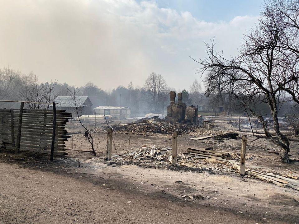На Житомирщині палають ліси / фото Facebook Віталія Бунечка