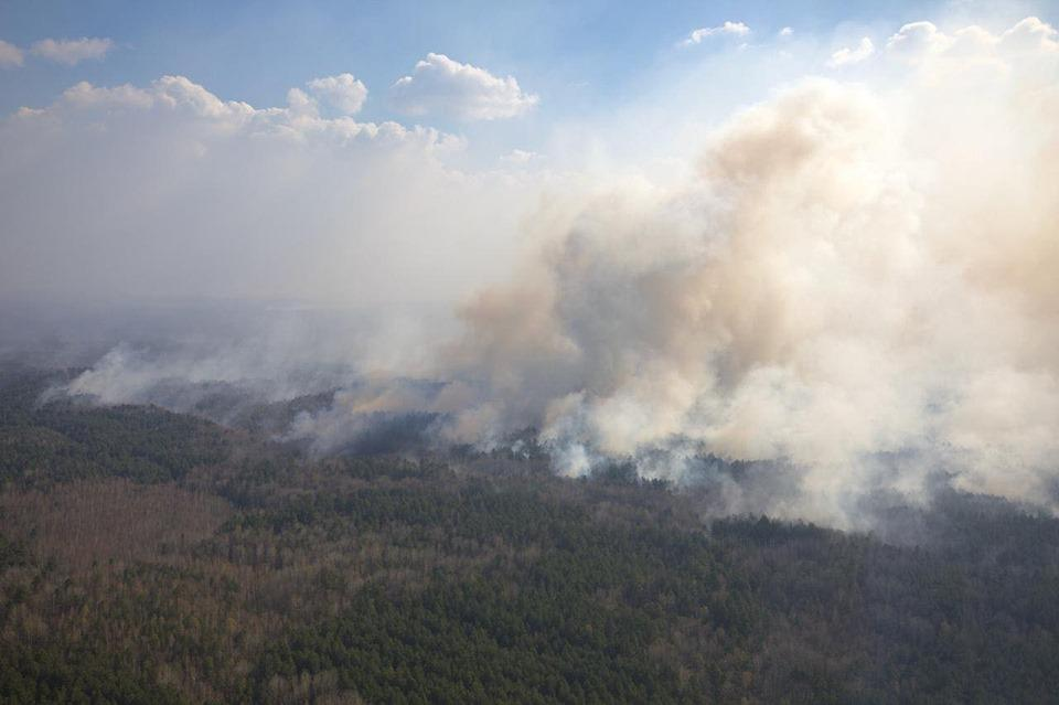 В Житомирской области продолжается тушение отдельных очагов пожаров / МВД