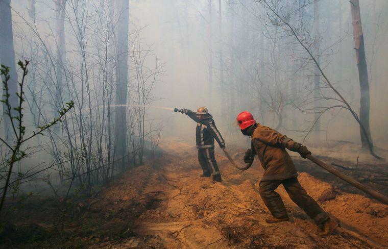 К тушению пожаров привлекли 1322 людей и 292 единиц техники / фото facebook.com/minecoenergy