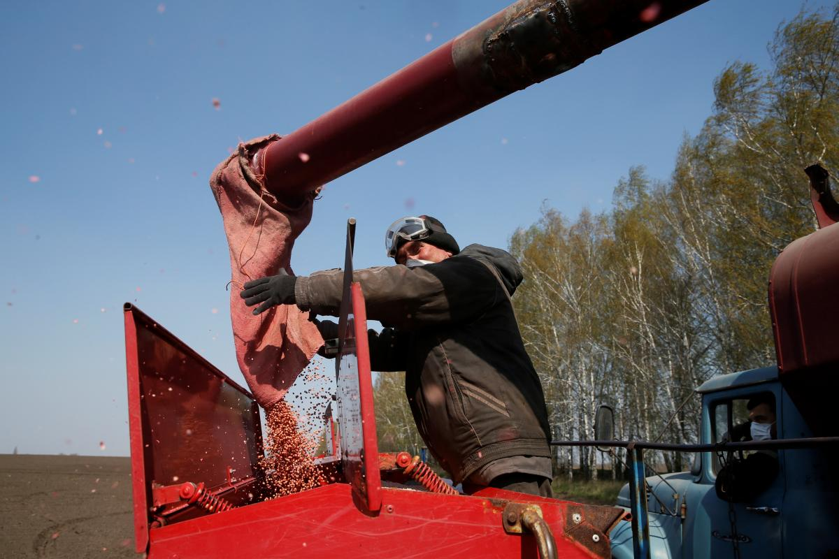 Производство сельскохозяйственной продукции в Украине сократилось / Иллюстрация REUTERS