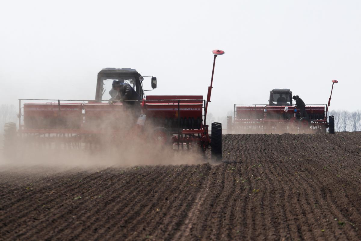 По предварительным данным областей, площадь посевов сельхозкультур во всех категориях хозяйств под урожай 2021 года ожидается в пределах 28,1 млн га / Иллюстрация REUTERS