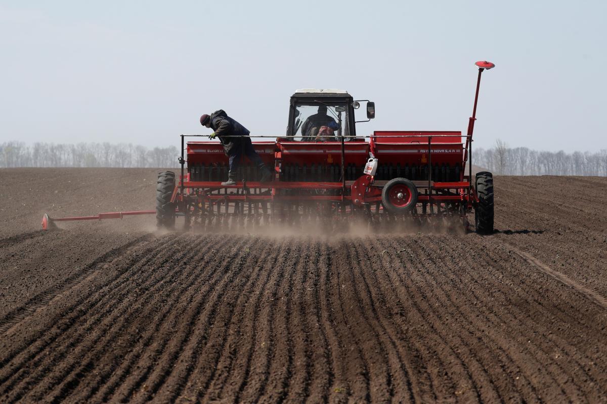 В Министерстве финансов заявили, что эта налоговая инициатива «ударит по схемам» в аграрном секторе / Иллюстрация REUTERS