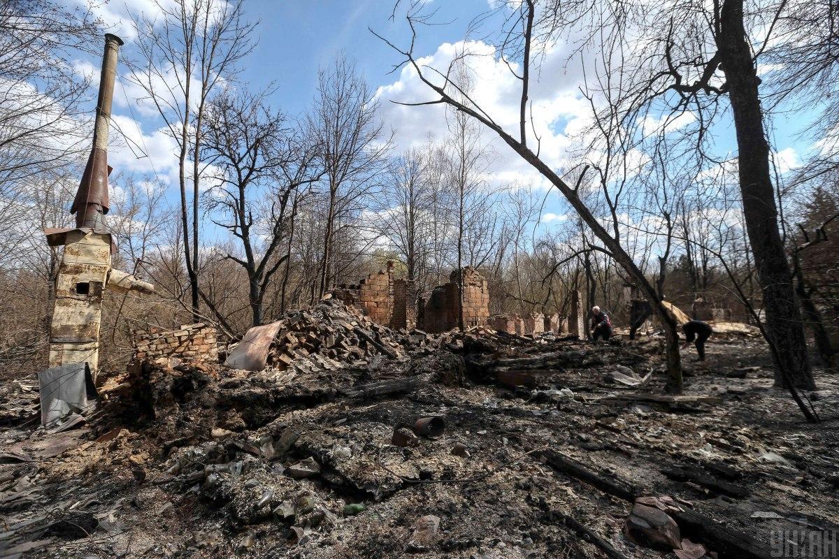 Пожарыв Житомирской области начались 4 апреля / Фото УНИАН