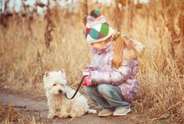 Собаку - можно, ребенка - нельзя: Комаровский раскритиковал правительство из-за карантина