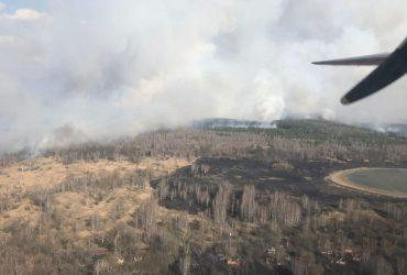 Спасатели ликвидируют лесной пожар в Зоне отчуждения (видео)