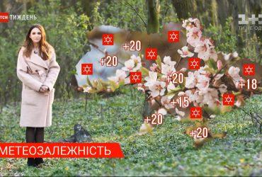 В Украине ожидается потепление до +20 градусов - Метеозависимость