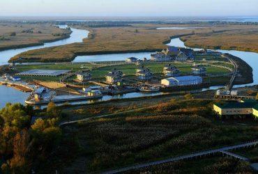 Бывший премьер РФ Медведев построил дачу на островах под свой рост – СМИ