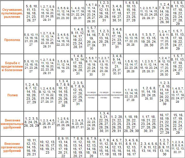 Лунный календарь по уходу за растениями 2020 / фото: agro-mir.com.ua