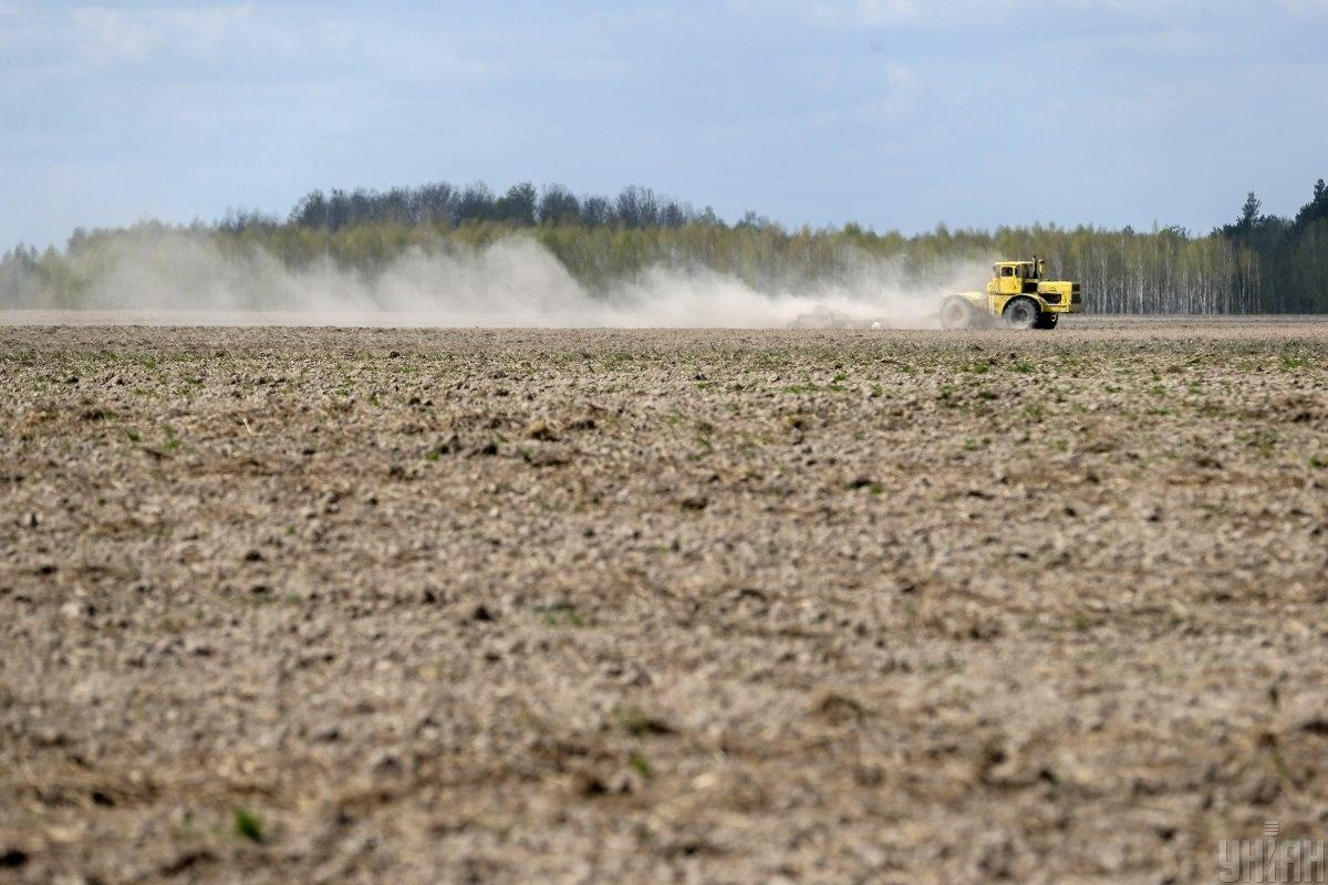 The atypical weather conditions of spring 2020 after a warm winter have introduced their changes to the production technology of one of the largest agricultural holdings in Ukraine / Photo from UNIAN