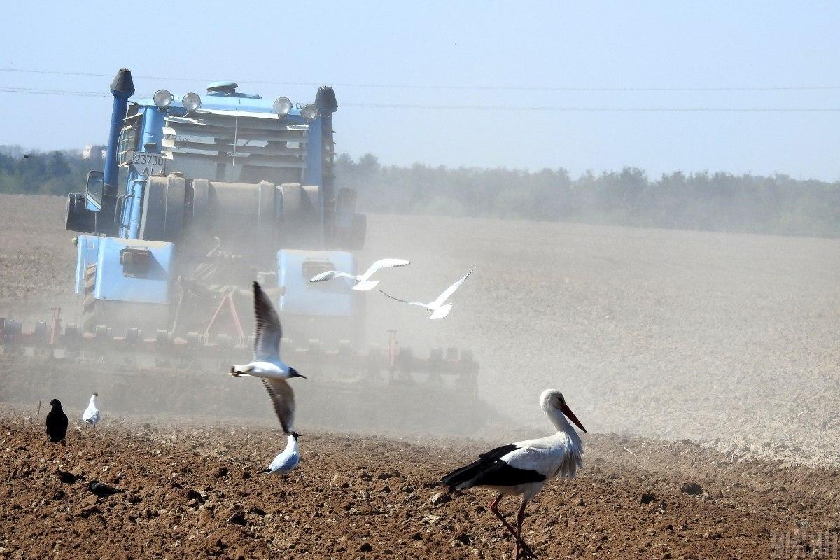 В конце марта 2020 года Рада приняла закон об открытии рынка земли / фото УНИАН