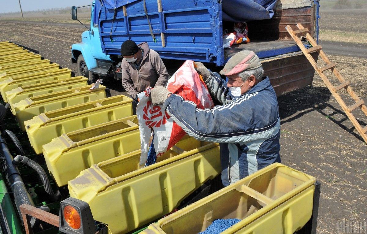 У 2020 році Україна імпортувала насіння зернових та олійних культур на понад 400 млн дол. / УНІАН Володимир Гонтар