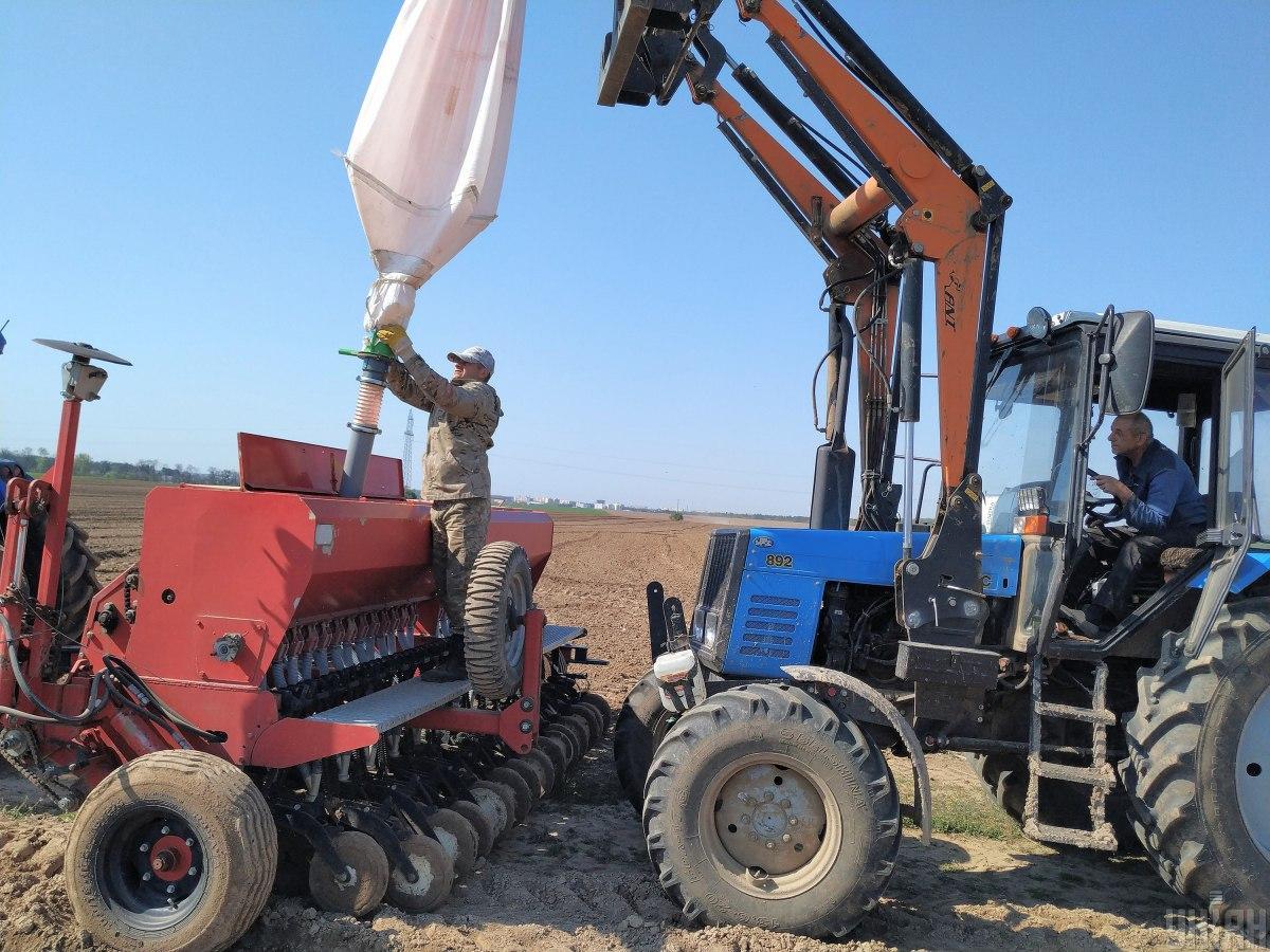 В сельском хозяйстве начали расти зарплаты/ Фото УНИАН