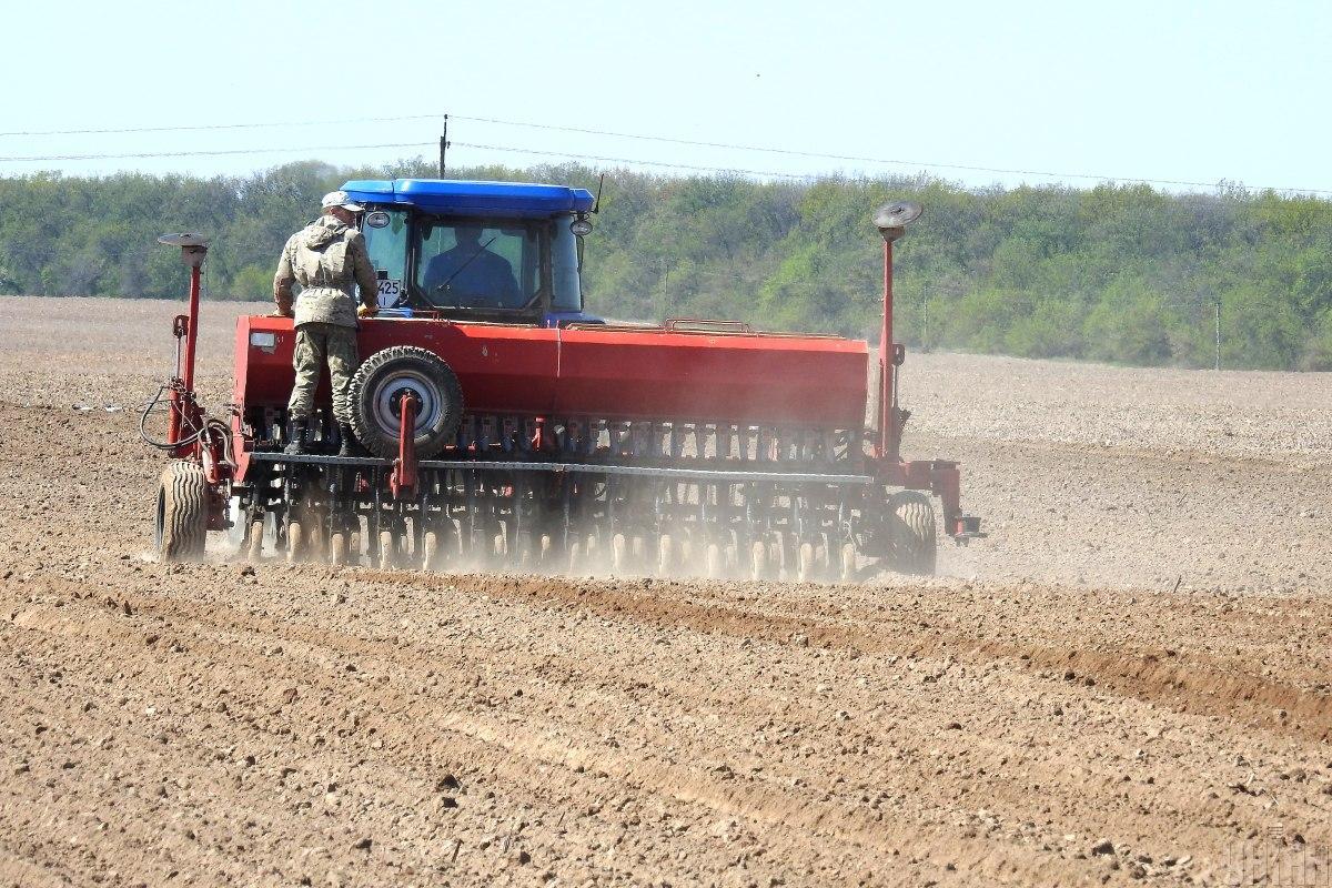 Рекордный урожай 2021 года обусловлен хорошими погодными условиями / фото УНИАН