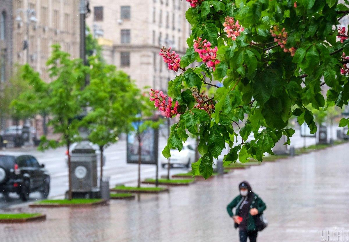 В этом году май был холоднее нормы / фото УНИАН