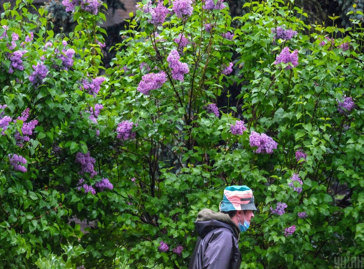 Без масок в общественные места ходить нельзя / Фото УНИАН