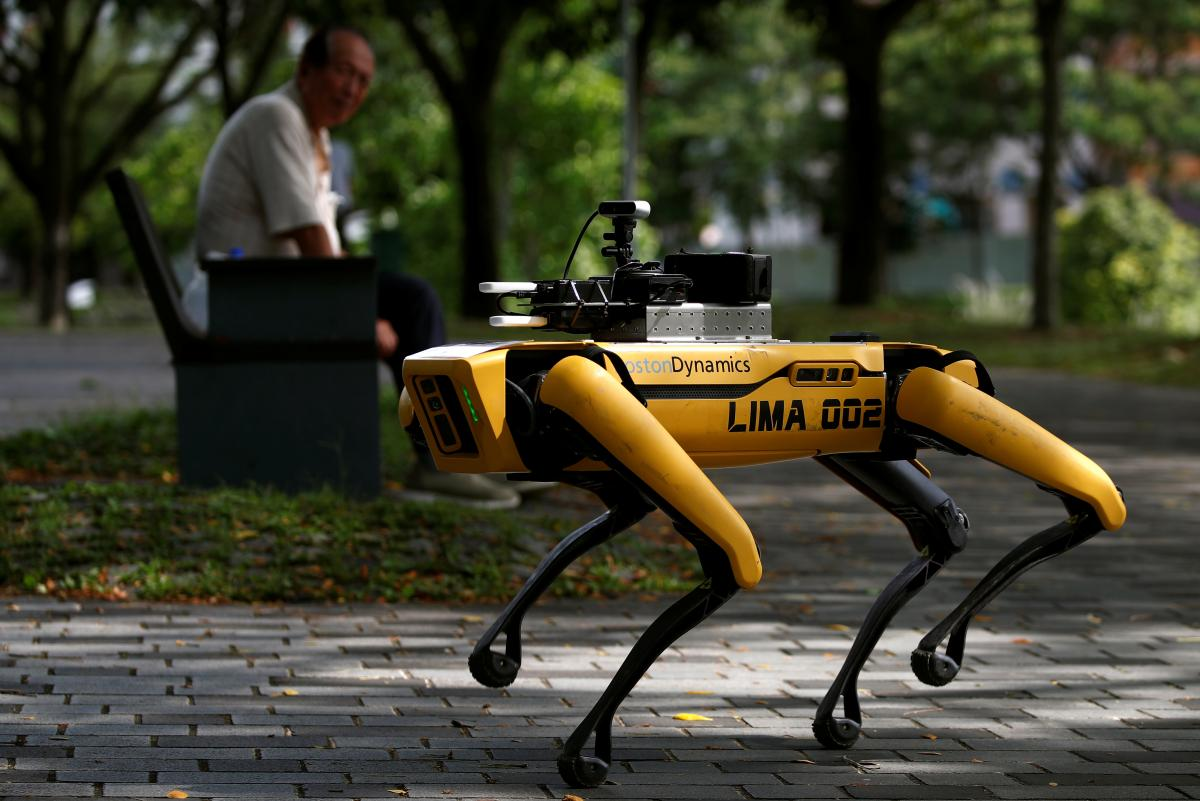 Роботопес на прогулянці \ фото REUTERS