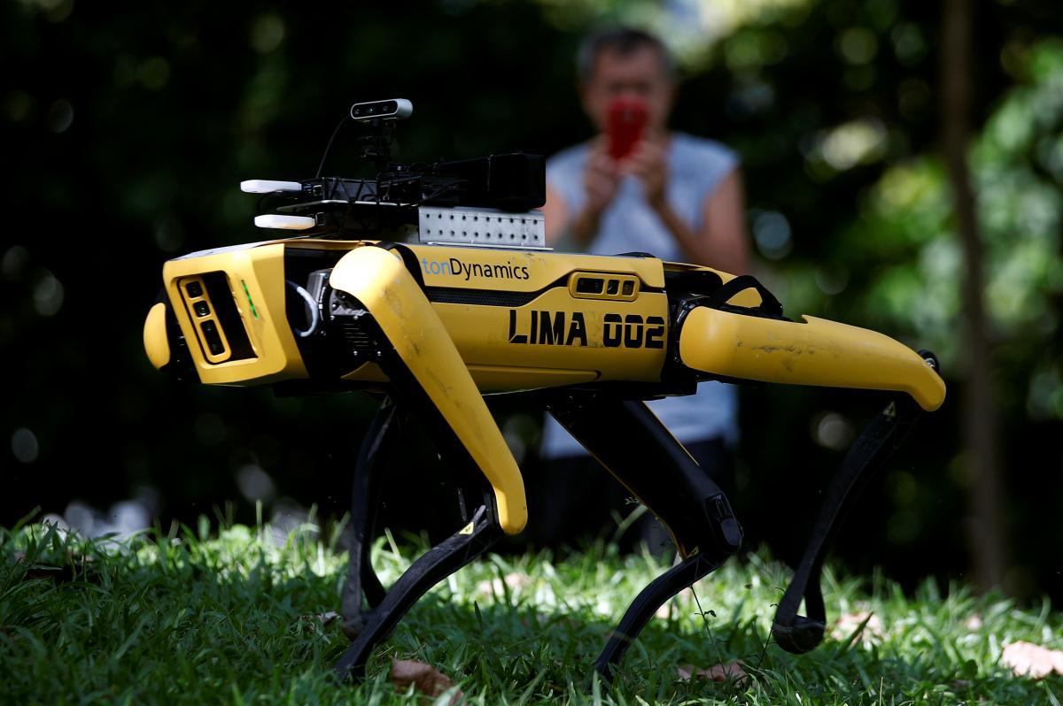 Исследователи планируют испытать свой роботизированный подход на людях с симптомамиCOVID-19/ фото Reuters