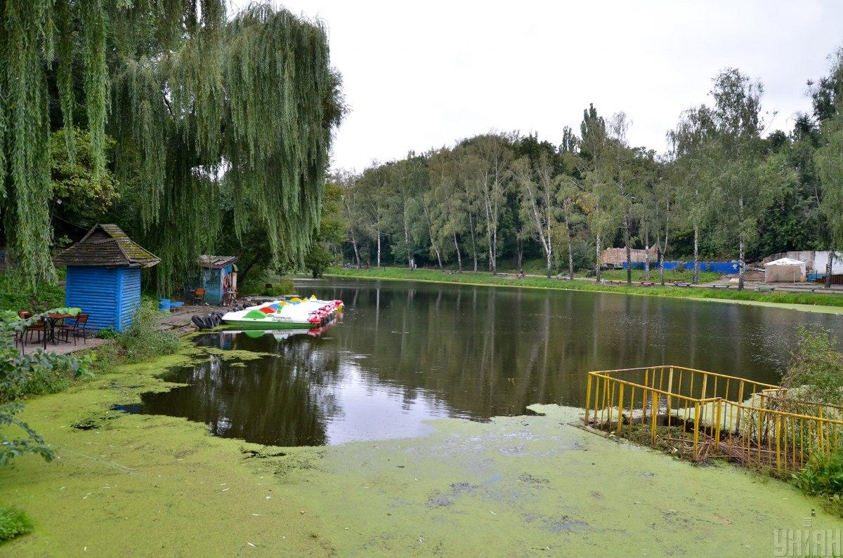 Парк Нивки / фото УНІАН