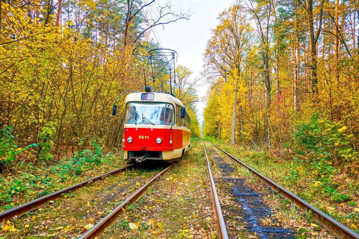 Дістатися до Пущі-Водиці можна на трамваї по мальовничиму маршруту / фото Depositphotos