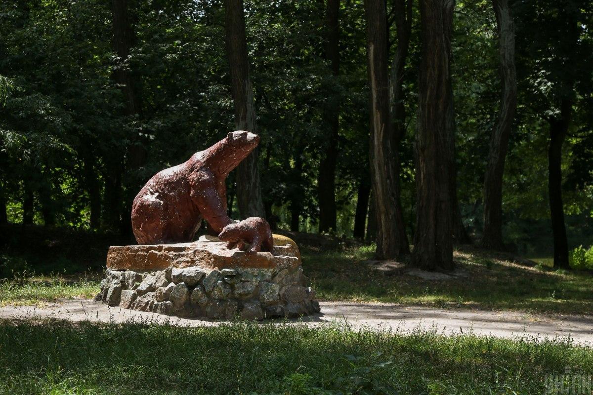 Парк є частиною Пуща-Водицького лісу / фото УНІАН