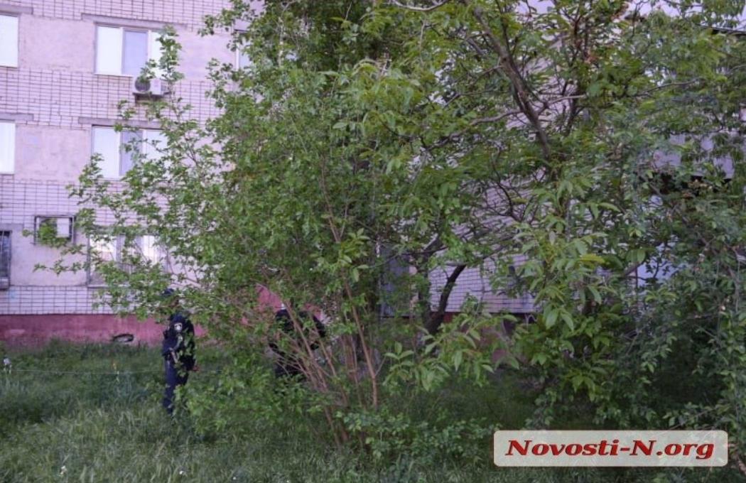 Женщина скончалась на месте / novosti-n.org