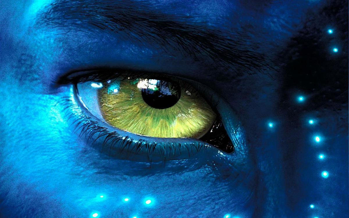 В 2010 году фантастический боевик «Аватар» Джеймса Кэмерона / фото flickr.com/korosirego