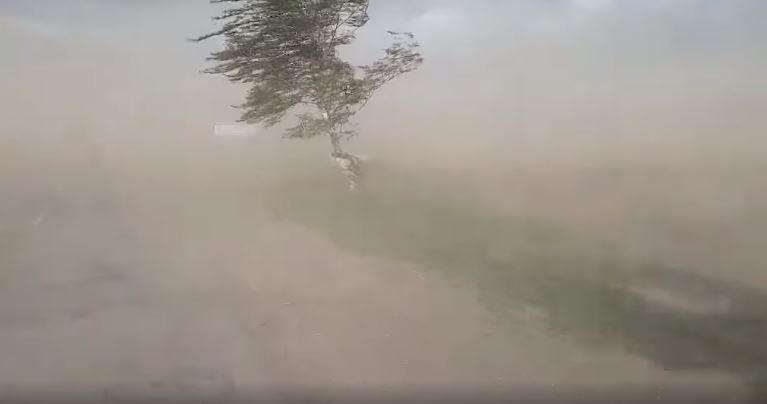 Из-за пылевой бури на дороге ничего не видно / Фото: скриншот