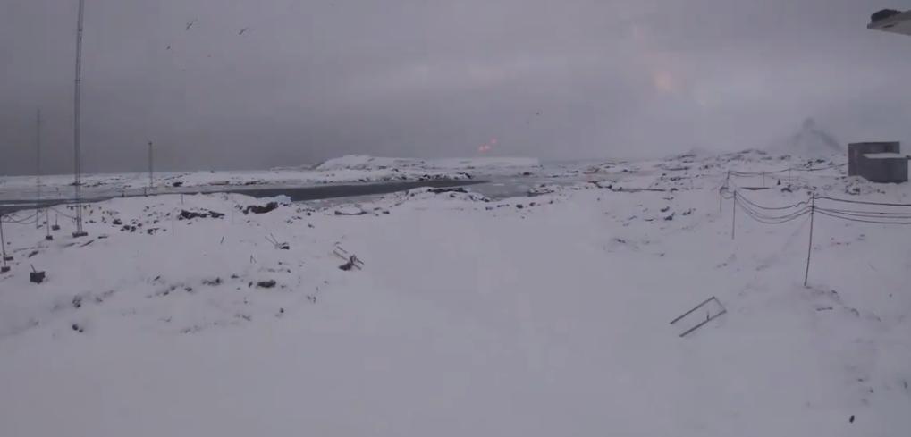 Украинцев поздравили с Антарктиды / скриншот видео