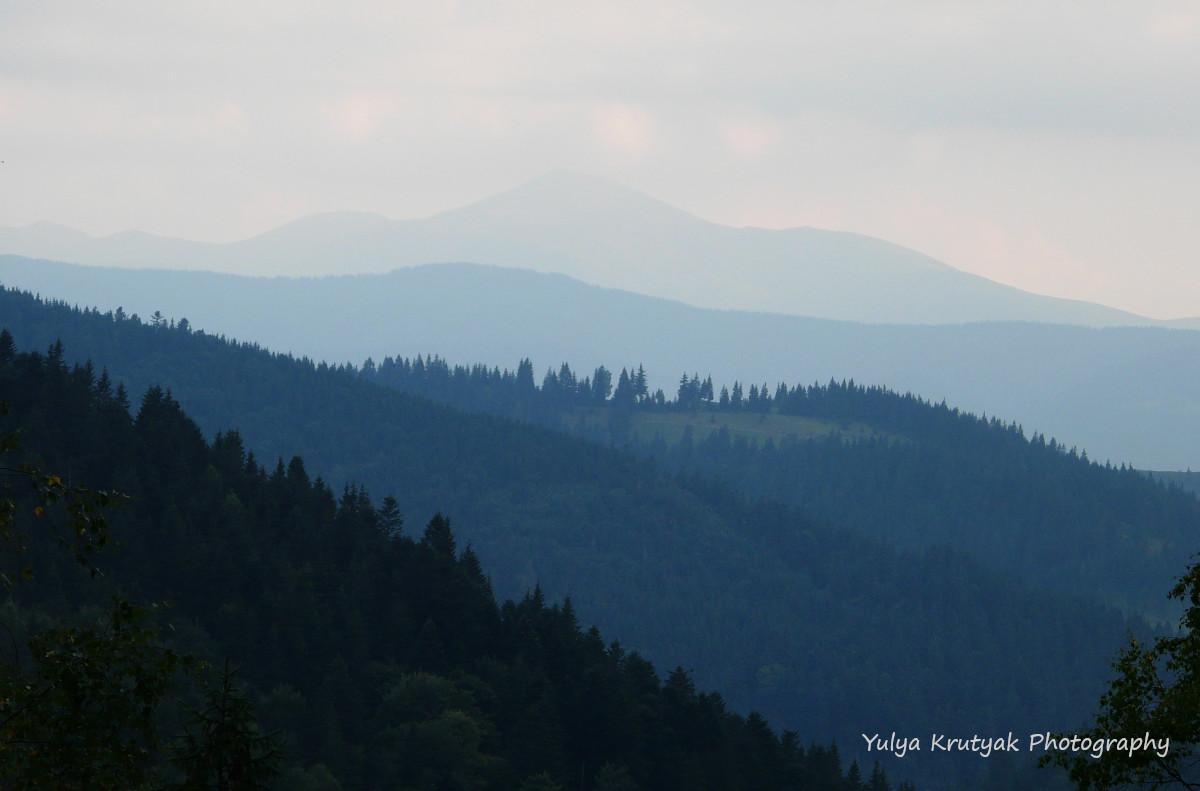 Ґорґанські ліси / фото Yulya Krutyak