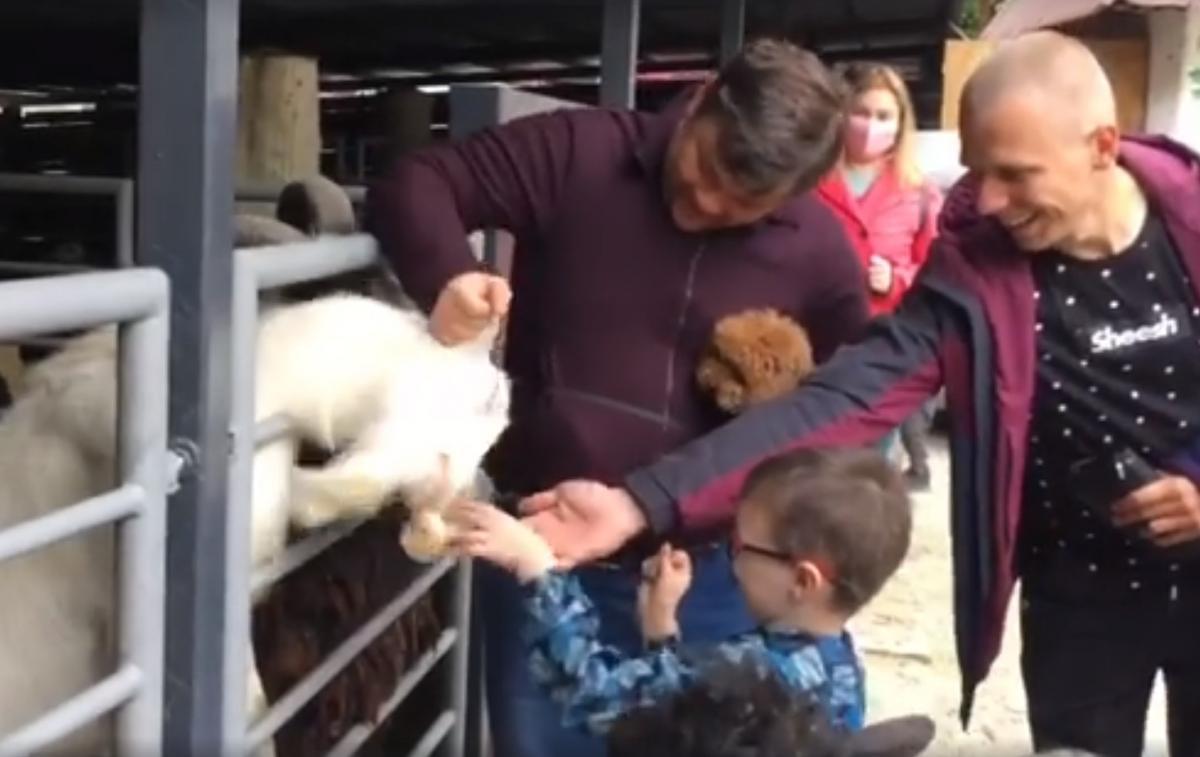 Богдан поконфліктував з козлом у столичному зоопарку / Скріншот