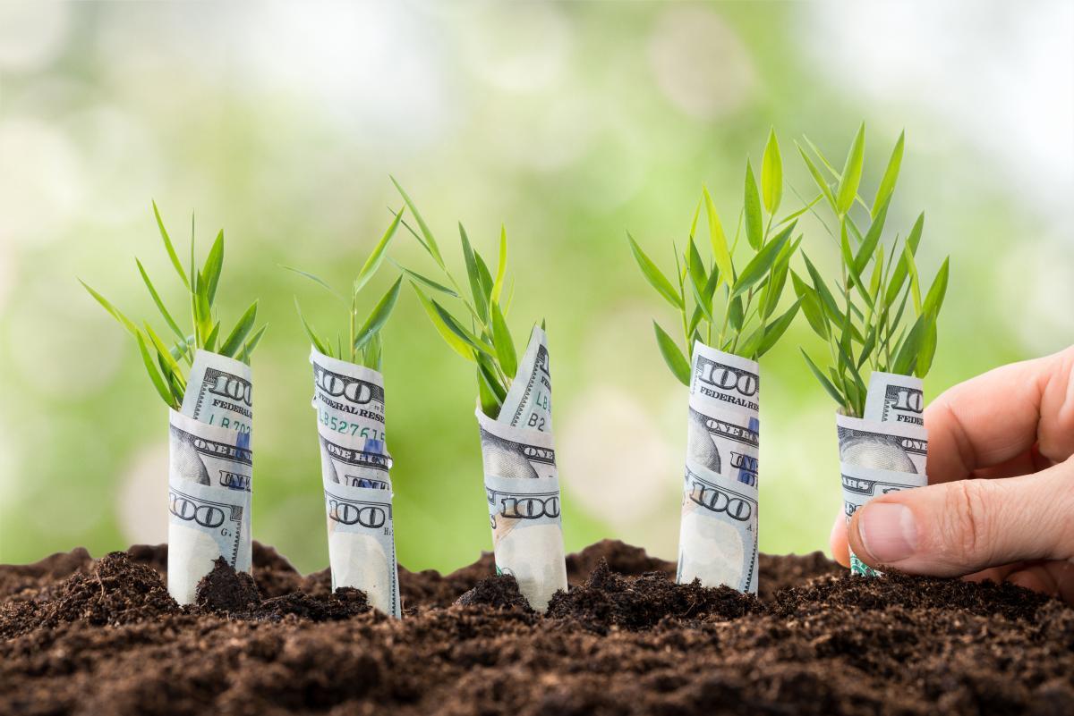 На які знаки чекає багатство в липні 2020 / фото ua.depositphotos.com