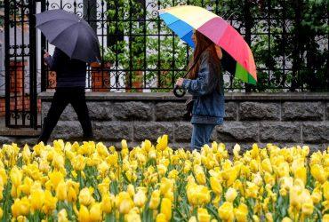 В Киеве завтра пройдет дождь, температура до +16°