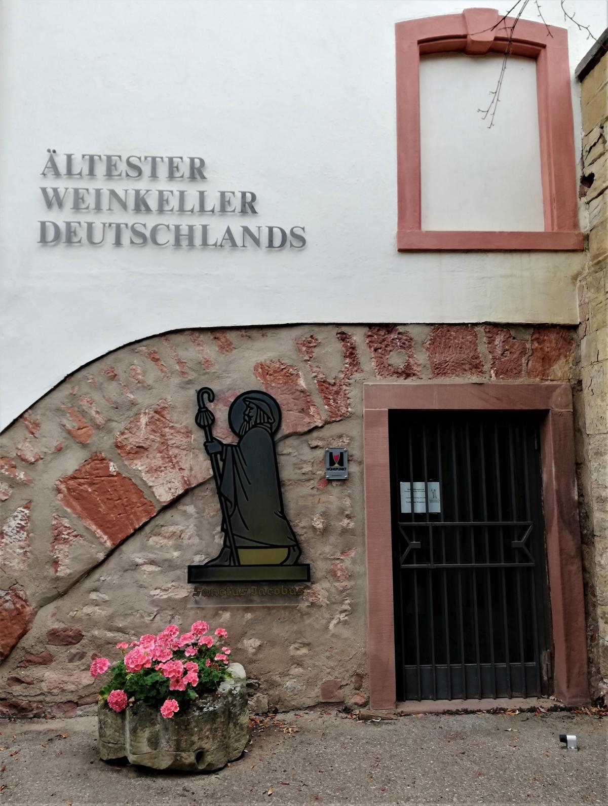 Кажуть - це найстаріший винний льох Німеччини / фото Марина Григоренко