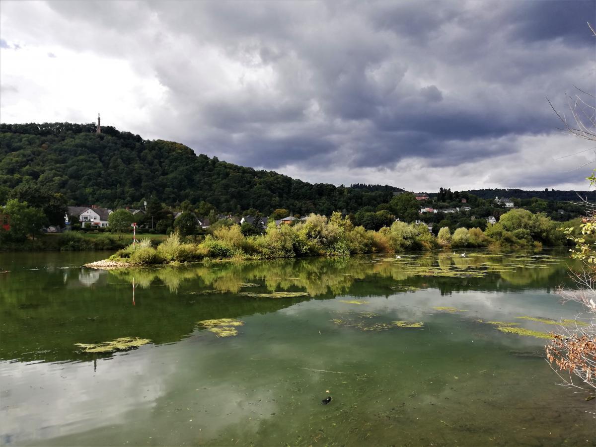 Заспокійливі пейзажі Тріра / фото Марина Григоренко