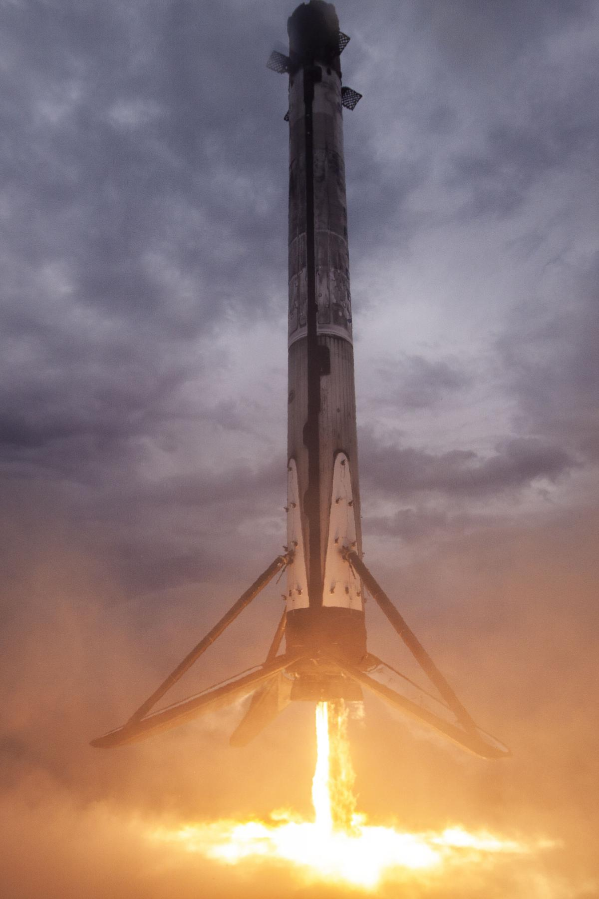 фото SpaceX/Twitter