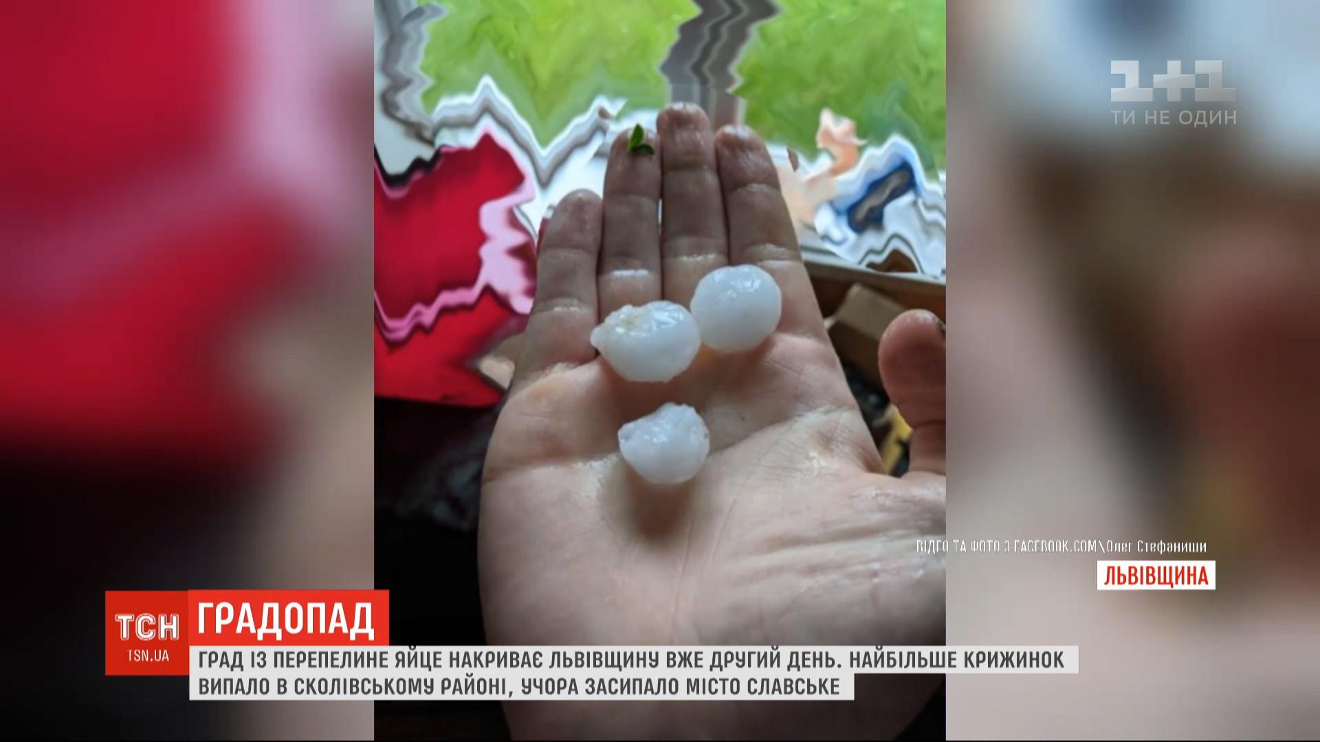 Об ухудшении погоды синоптики предупреждали / скриншот