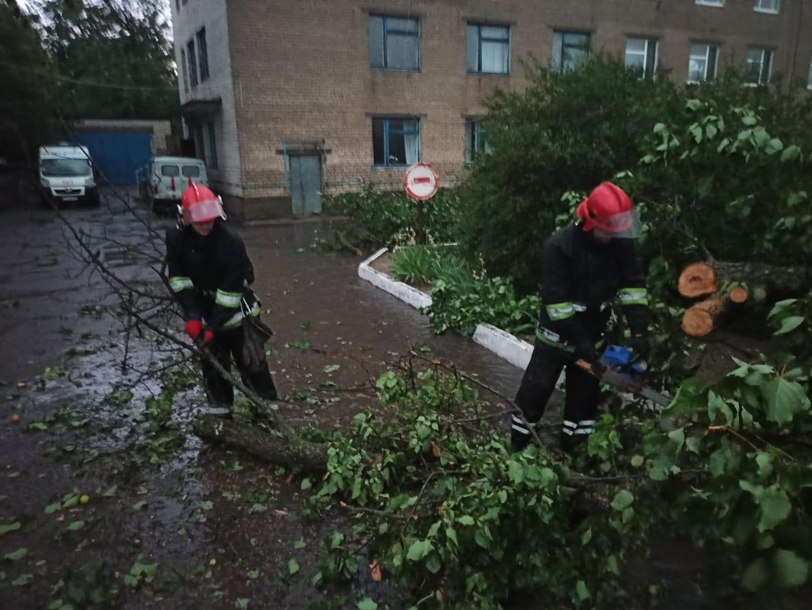 Rescuers are removing fallen trees / Photo from State Emergency Service