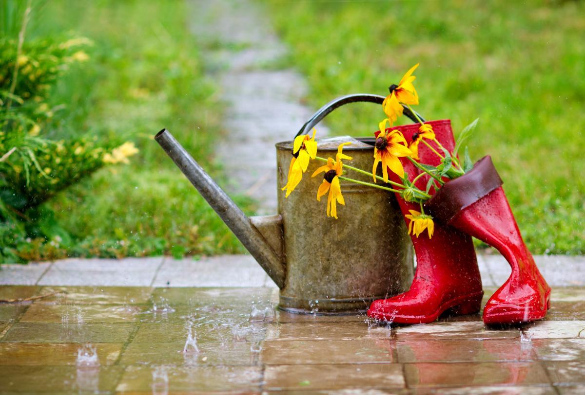 Сьогодні в Україні місцями пройдуть дощі / ua.depositphotos.com